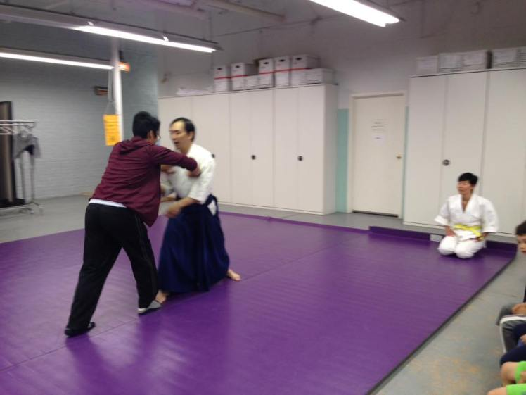 Aikido Pushing